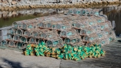 Lobster Traps in Northwest Cove