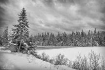 Labrador Lake, Lunenburg Co.